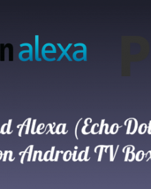 Plex and Alexa (Echo Dot) Demo on Android TV Box